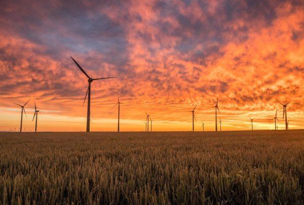 Klimapaket bedroht Ausbau der Windkraft in Schleswig-Holstein