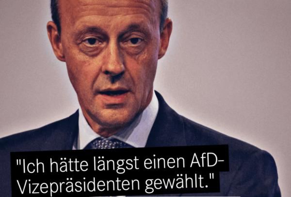 Friedrich Merz, Mittelstands-Millionär