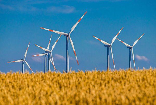 Windkraft in SH: Da weht noch was!